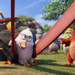 Angry Birds knock Captain America from top of box office pecking order