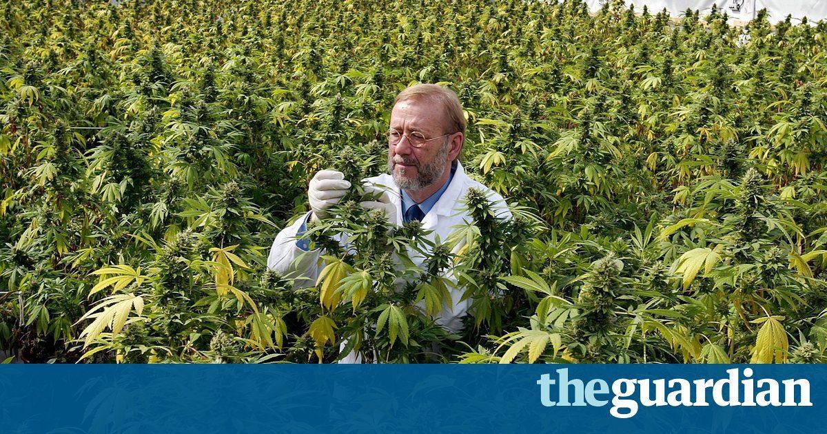 Inside big pharma's fight to block recreational marijuana