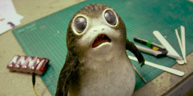 Star Wars Introduced Adorable Space Penguins Into Its Universe & Twitters In Love